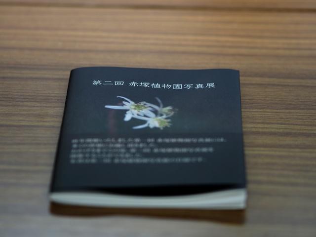 M3058828_2048x1536_補正済.jpg